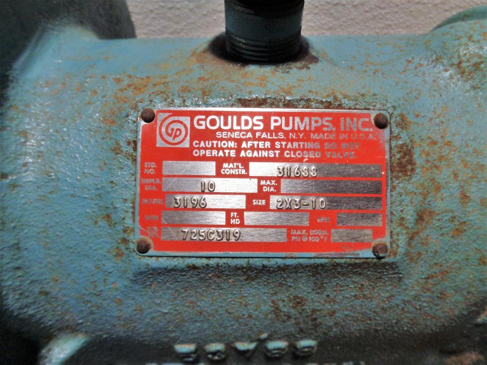 Goulds 3196 MT Centrifugal Pump 2