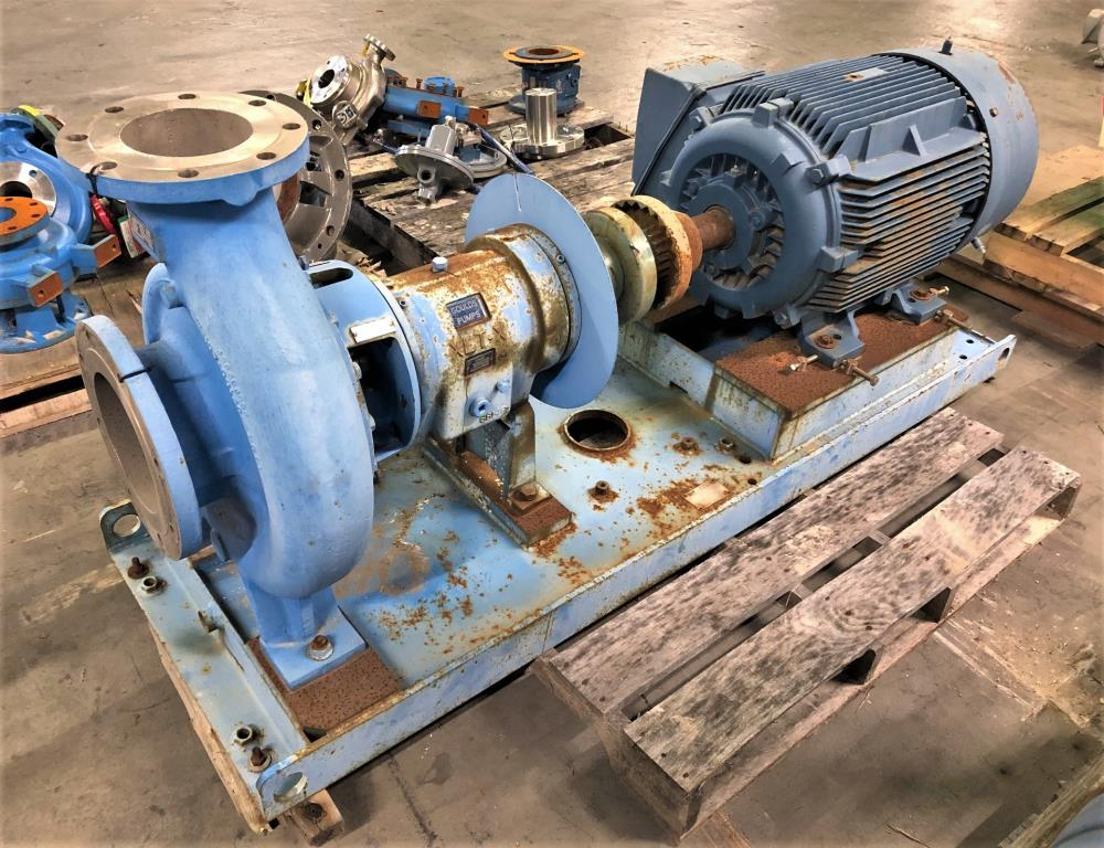 "Goulds 3196 XLT-X Centrifugal Pump, 6""x8""-13"", CZ100 Nickel w/ 100 HP Motor"