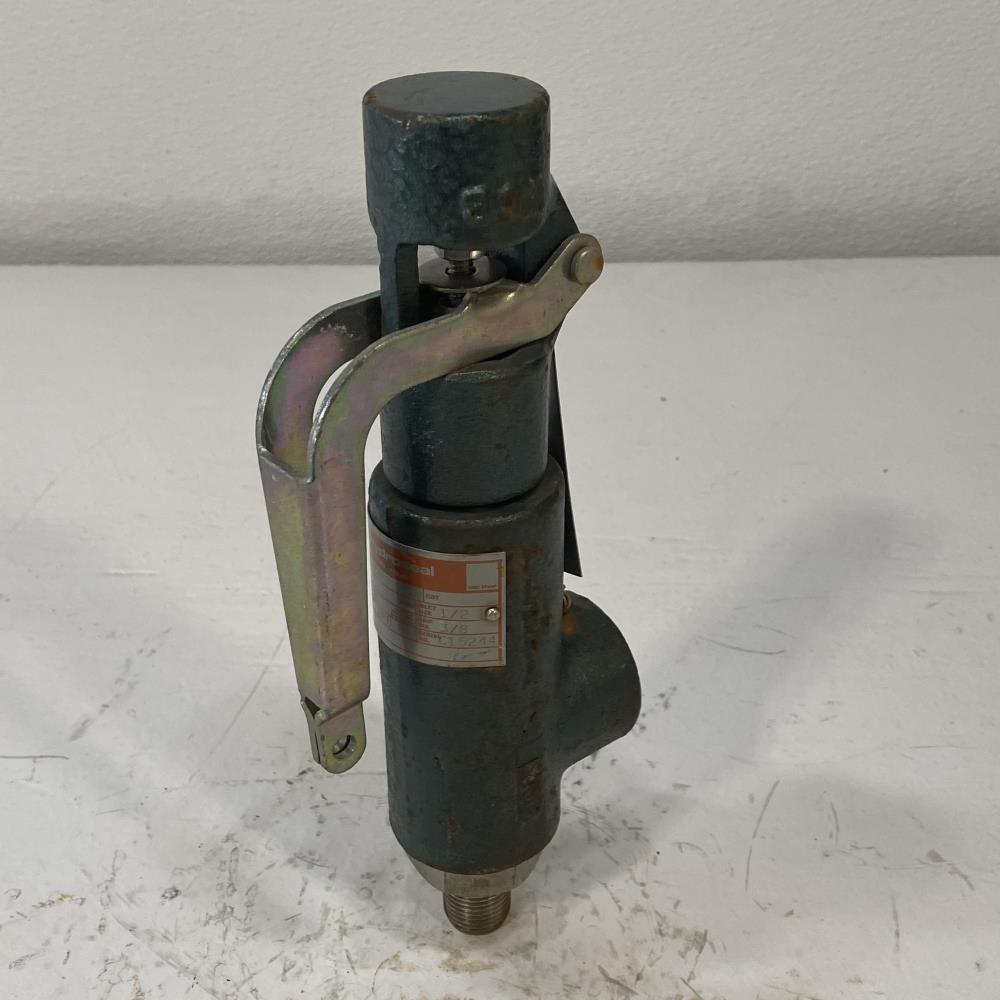 "Hydro-Seal 1/2"" MNPT x 3/4"" FNPT WCB Relief Valve, 1BV0LN/C0"