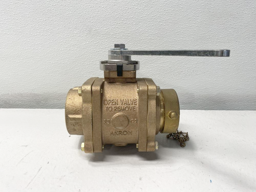 "Akron Brass 2.5"" NPT Heavy Duty Swing-Out Valve 88250119"