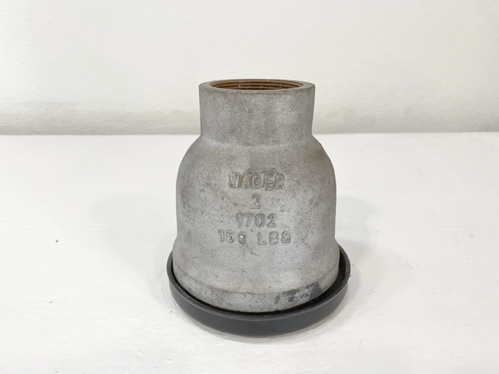"""Wager 2"""" NPT 150# Carbon Steel Inverted Vent Check Valve 1702"""