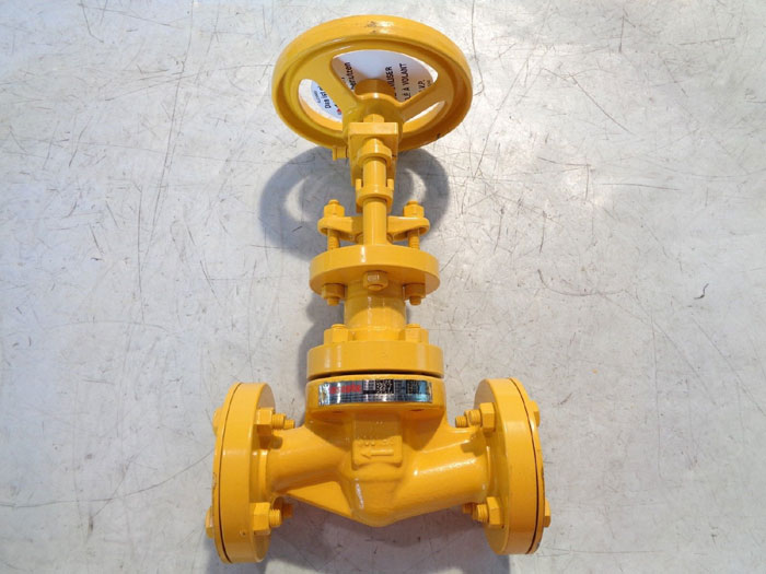 "DESCOTE 1"" 300# SEALED GLOBE VALVE 2100B"
