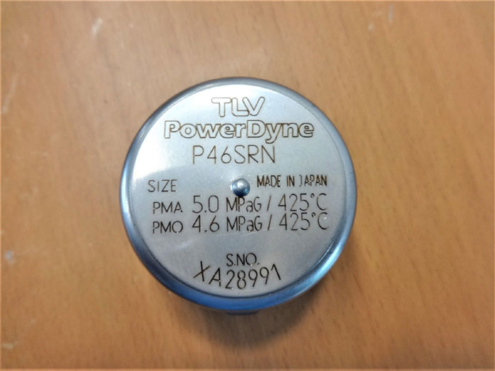 LOT OF (2) TLV POWERDYNE REPAIR KIT P46SRN