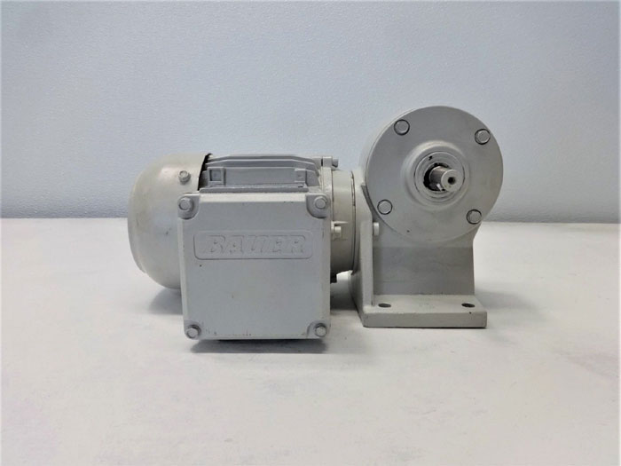 Eberhard Bauer Worm Gear Motor E3-10/DK 54-143 L
